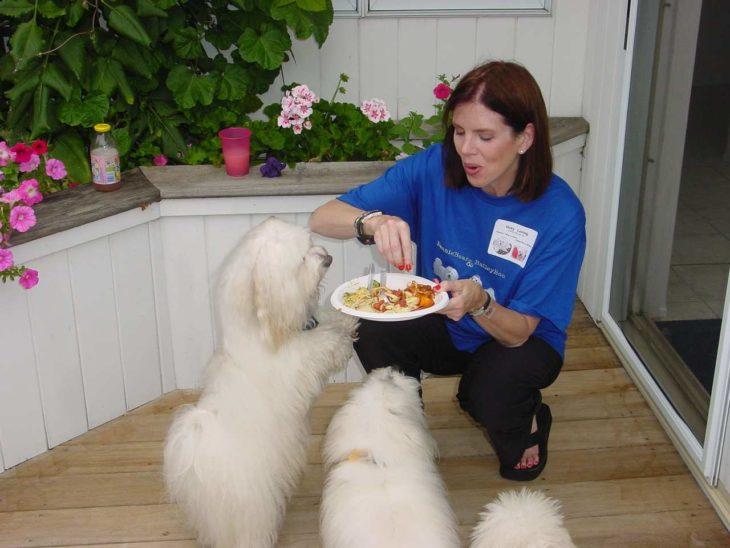 persona alimentando perros