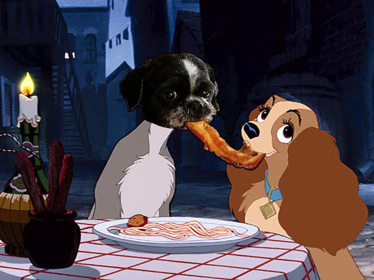 perro photoshop comiendo tocino como la dama y el vagabundo