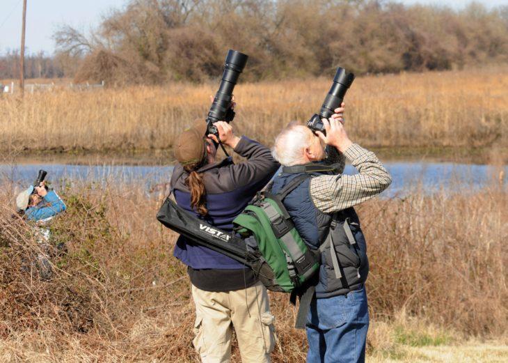 fotógrafos en la naturaleza