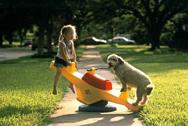 niña jugando con un perro