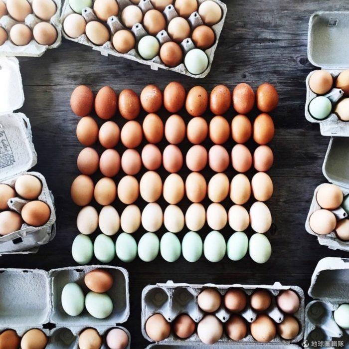 Huevos organizados por colores