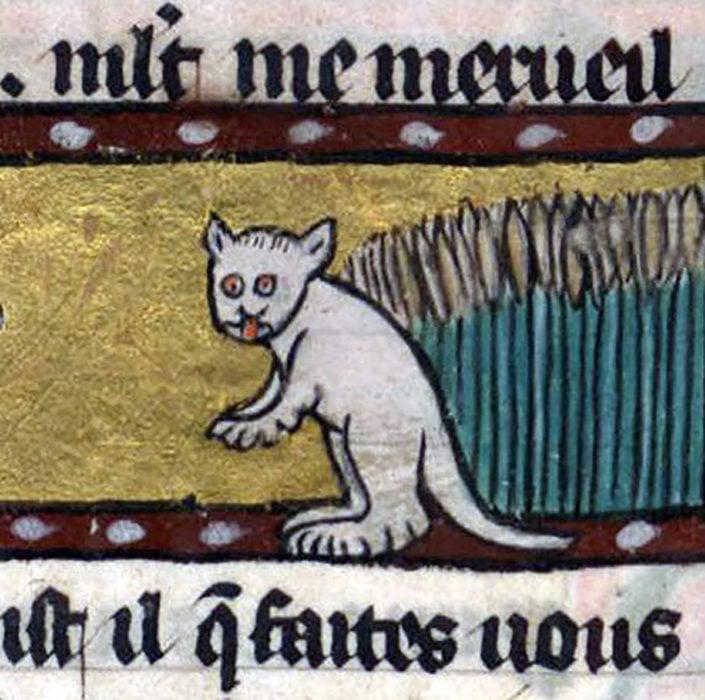 pintura medieval de gato sacando la lengua