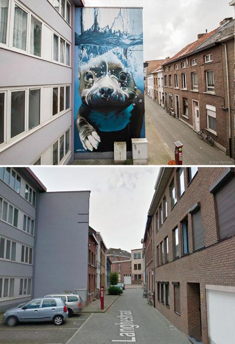 Mural de perro buceando