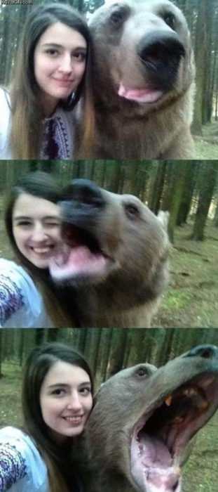 muchacha se toma selfies con osos