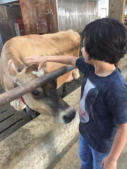 niño con cabeza de vaca
