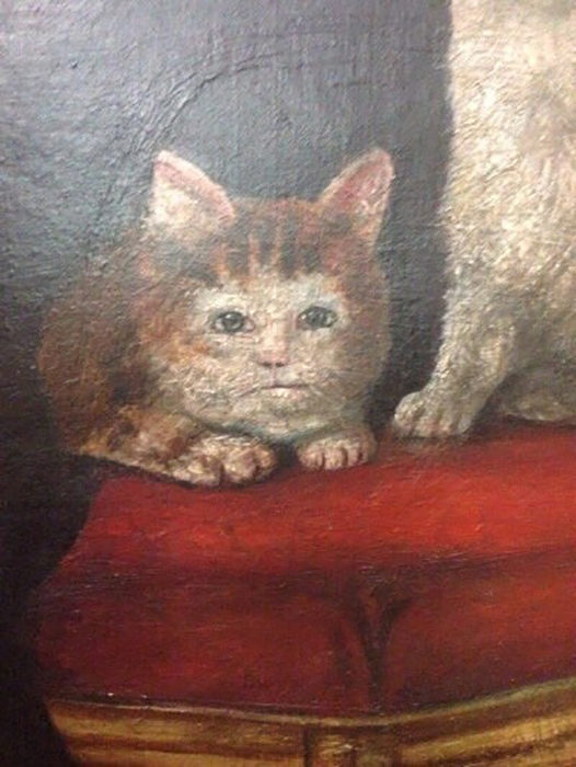 pintura de gato que parece bebé