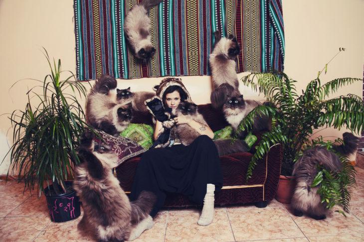 Una joven rodeada de muchos gatos