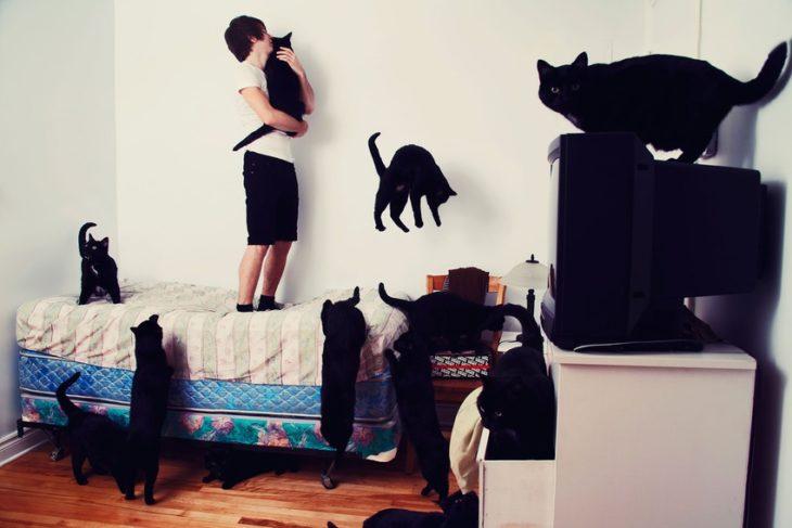 Un jóven rodeado de muchos gatos