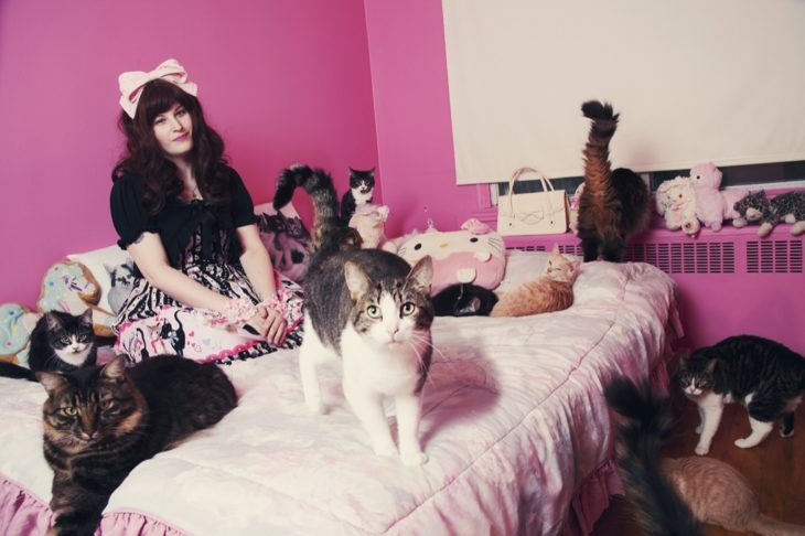 Gatos y su dueña en un cuarto rosa