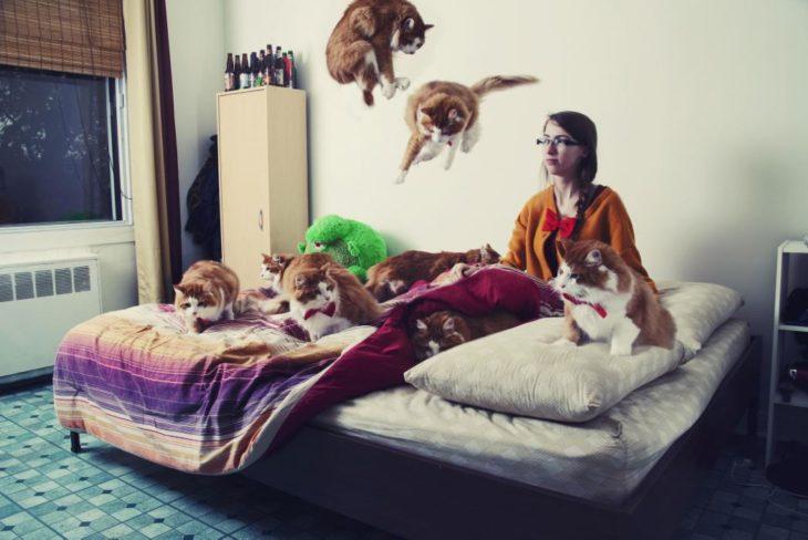 Una muchacha con muchos gatos en el cuarto