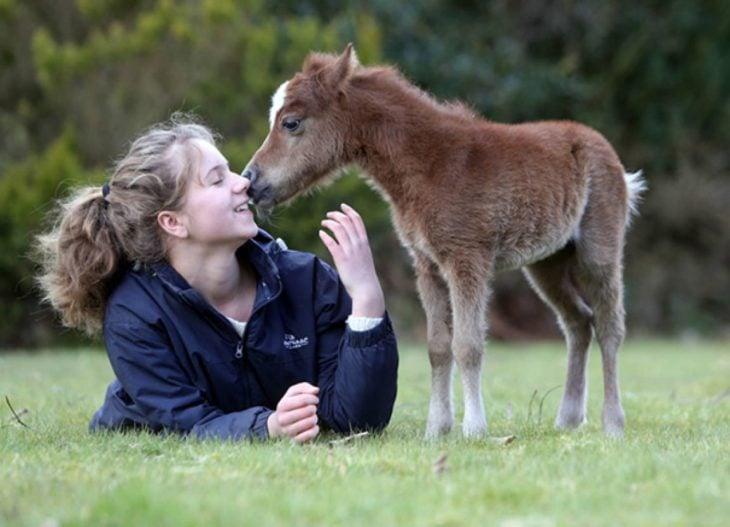 Chica besando a su caballo miniatura