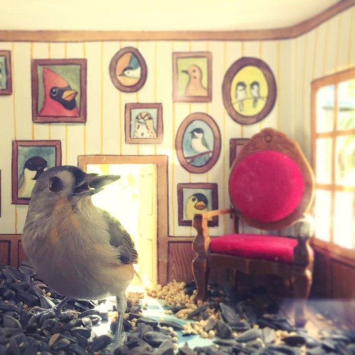 Pájaro dentro de una casa comiendo