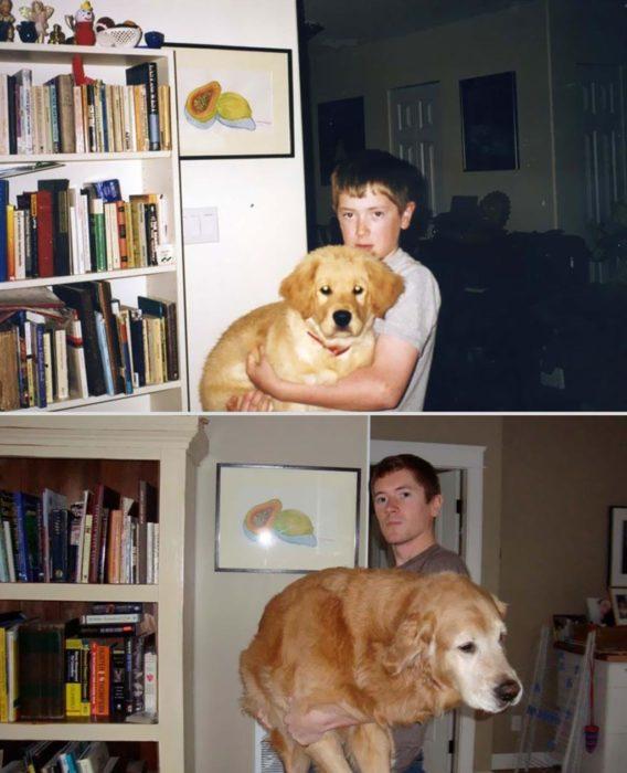 a este perro le gusta que lo carguen
