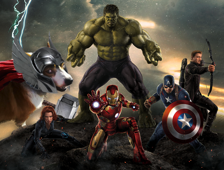 Batalla de Photoshop Corgi - the avangers