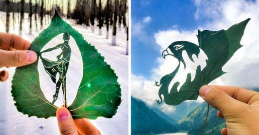 cover-dibujo-hojas