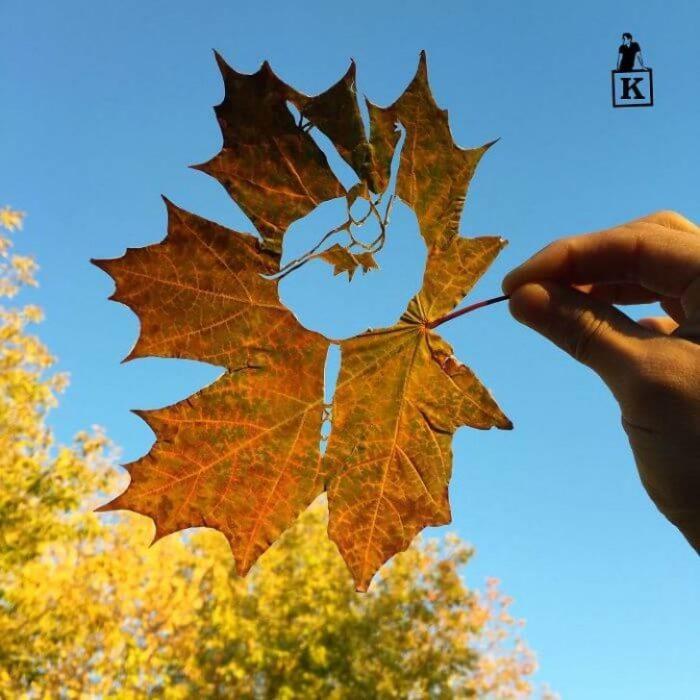 Desenho feito com uma faca na folha do outono