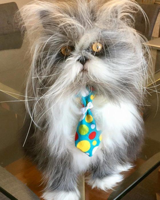Atchoum con corbata