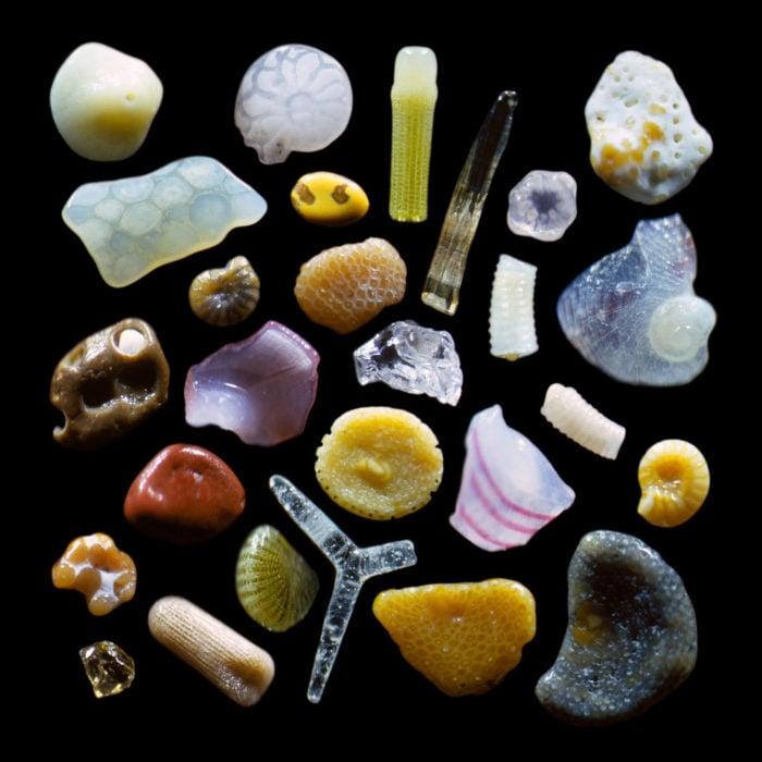 Granos de arena ampliados 300 veces