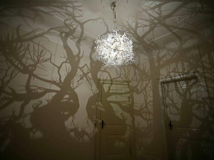 cuarto de bosque
