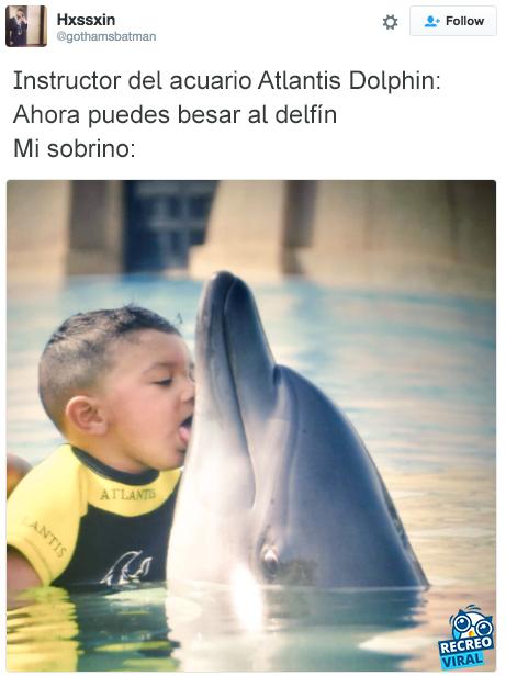 Niño lamiendo a un delfín