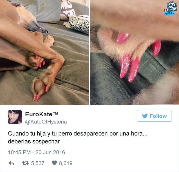 Perro con las uñas pintadas
