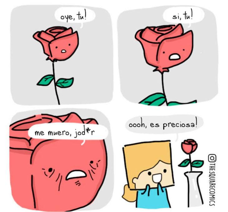 Una rosa triste