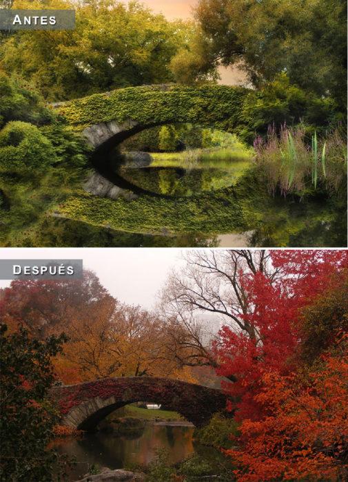 Otoño - puente antes y después