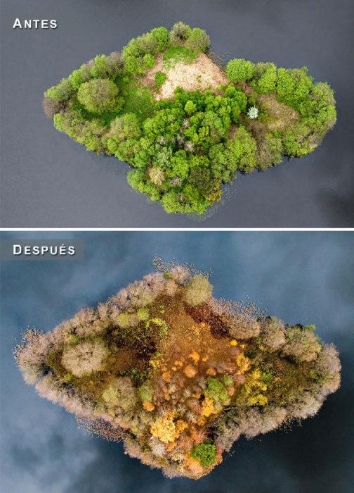 Otoño - isla antes y después