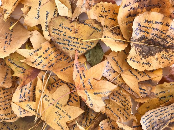 Hojas de árboles con poesía en ellas