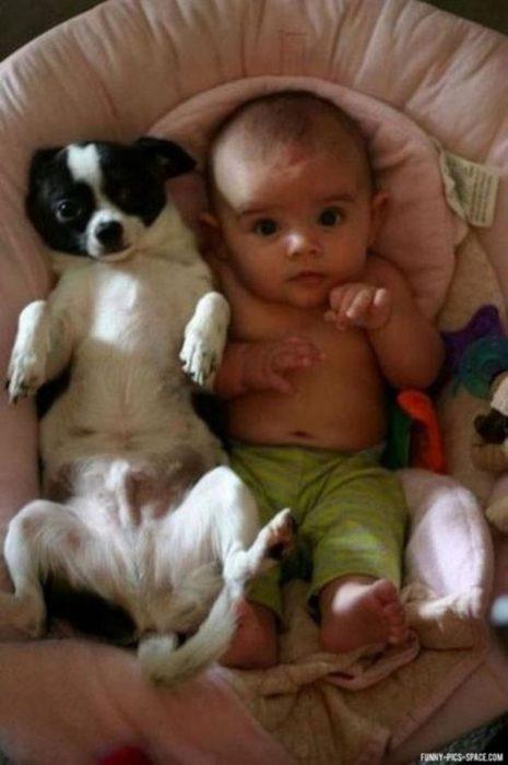Bebé y perrito acostados
