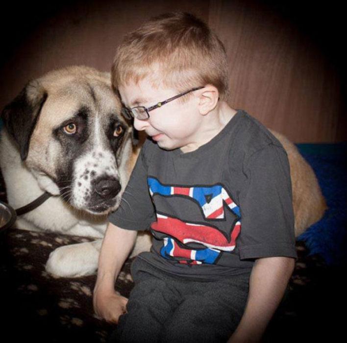 Perrito al lado de un niño especial
