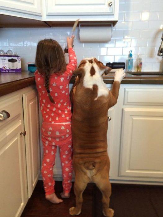 Niña y perrito cocinando