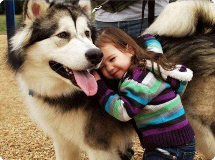 Niña abrazando a husky