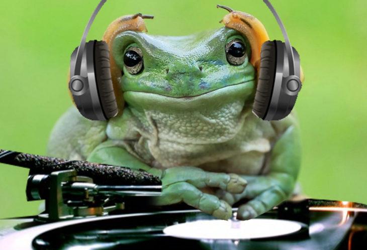 Batalla PS - Rana con audífonos