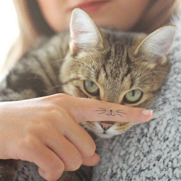 Los bigotes de gatito