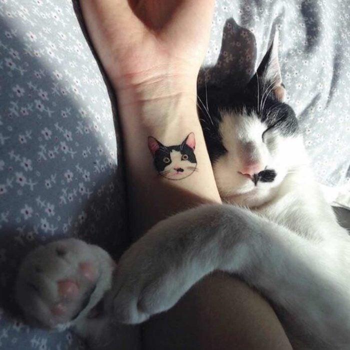 Un gato y su retrato hecho en tatuaje