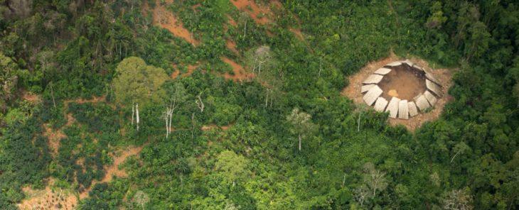 Selva del Amazonas en Brasil