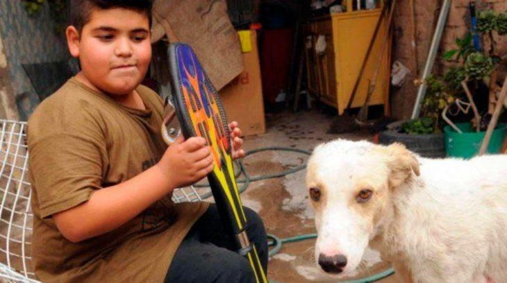 Niño su patineta y su perro