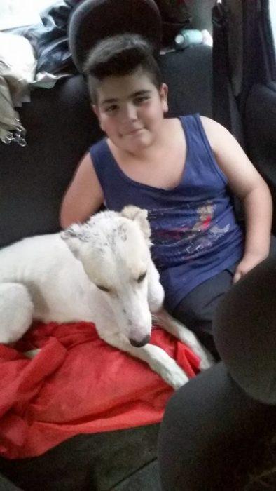 niño en carro con perro