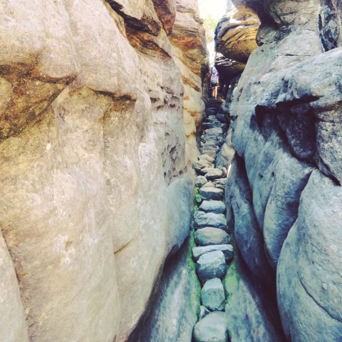 sendero en el parque nacional de australia