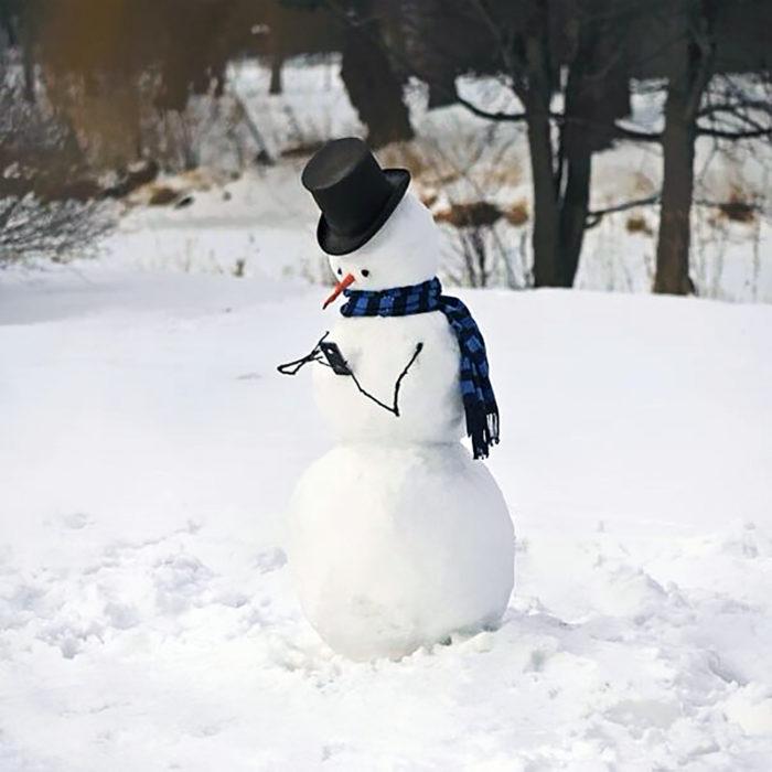 muñeco de nieve con celular