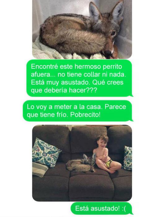 Mensaje de texto mujer bromea a su esposo - encontré este perrito