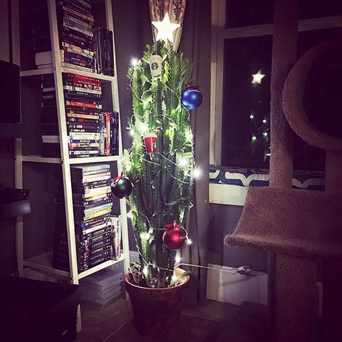 cáctus adornado como árbol navideño