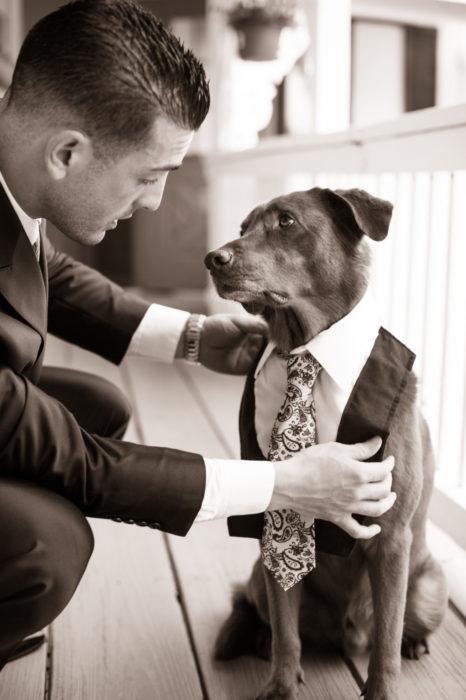 novio vistiendo a su perro