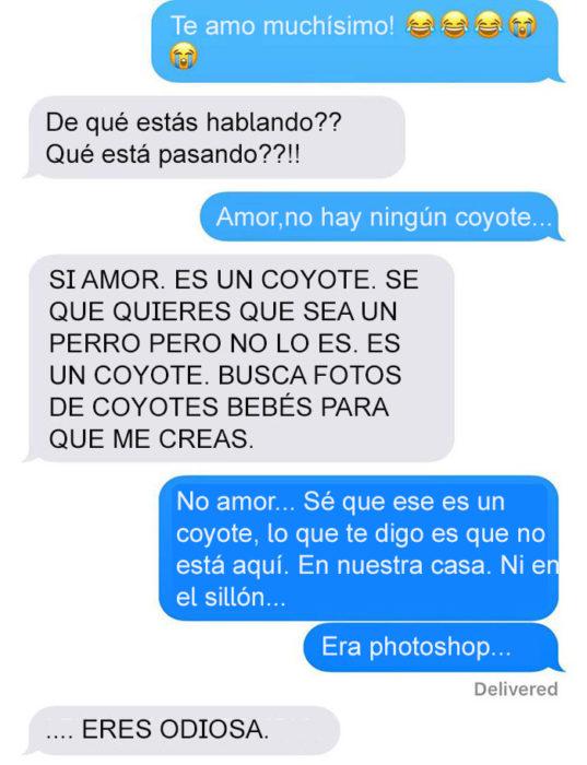 Mensaje de texto mujer bromea a su esposo - no hay ningún coyote