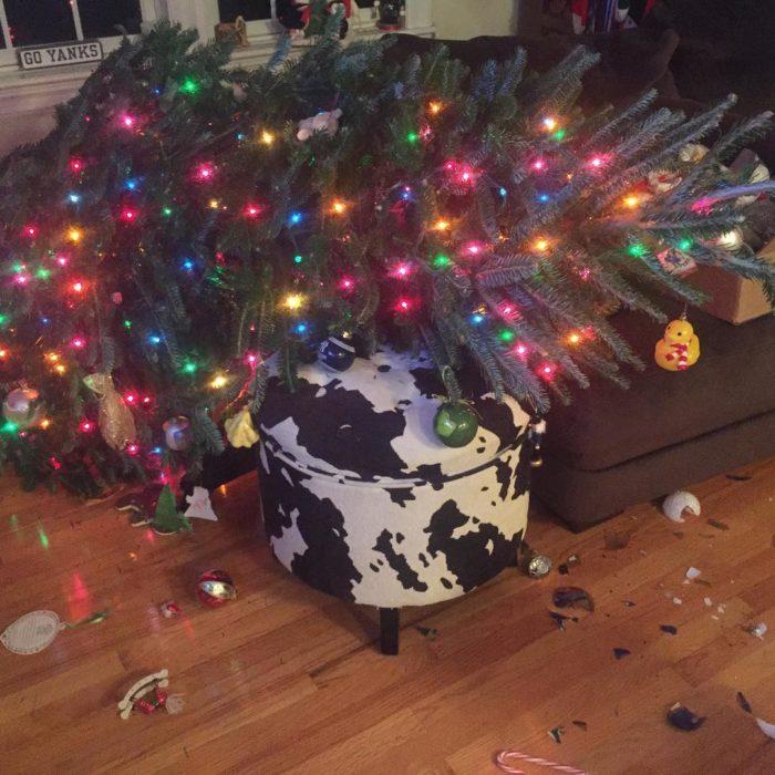 árbol de navidad caído