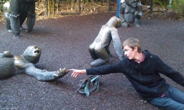 hombre tomando un dedo de una estatua de monos
