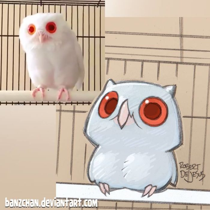 búho convertido en dibujo anime