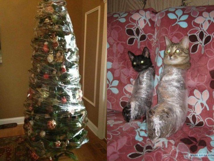 árbol de navidad y gatos enredados con papel plástico