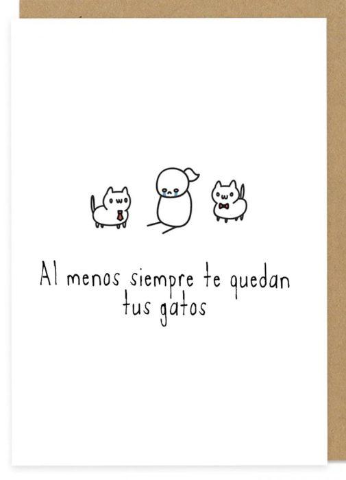 tarjeta para solteros sobre gatos